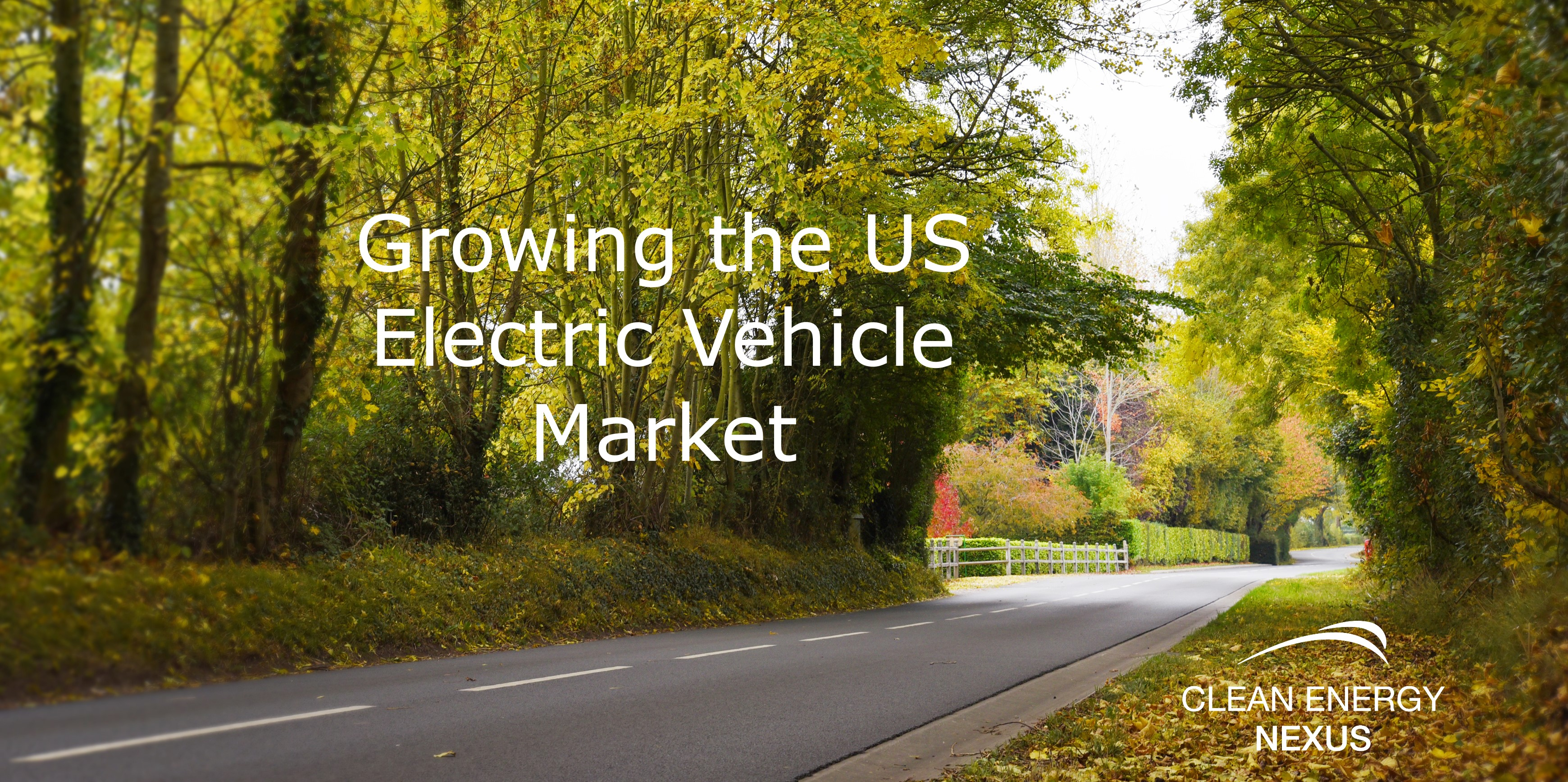 Growing the US Electric Vehicle Market